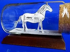 horse rider gift